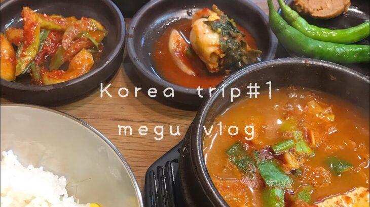 【vlog/韓国旅行/ひとり旅 】おすすめチキン【#1】