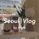〔vlog〕韓国旅行 #1 / 弘大 新村 / カフェ・雑貨屋巡り / 宿紹介 / ソウル