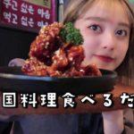 【Vlog】YouTube撮影の合間に韓国料理を食べに行く🇰🇷