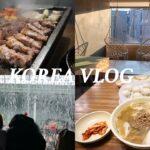 【Korea Seoul Vlog #1】規制前、最初で最後の韓国旅行Vlog (JP/ENG)・한국여행・ロッテワールド・弘大・明洞