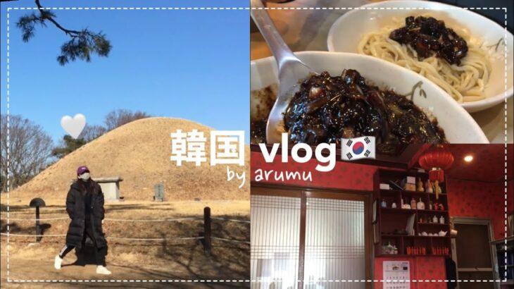 韓国vlog 旅行 | 日本就職予定の韓国人、韓国日常です。慶州旅行行ってきました!경주여행 브이로그 일상vlog