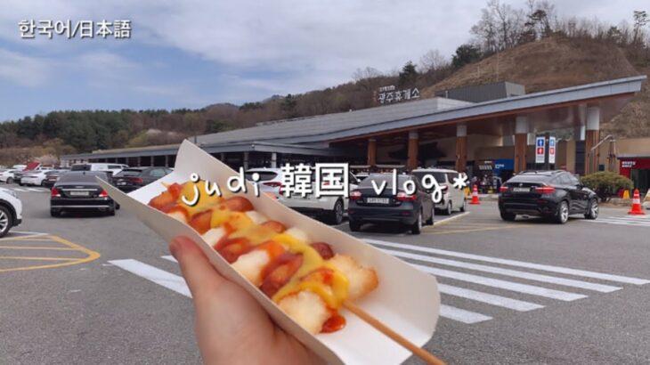 【韓国人vlog】韓国旅行 | 韓国のサービスエリア、お花見を楽しんで一日!韓国ストリートフード / 韓国コンビニ