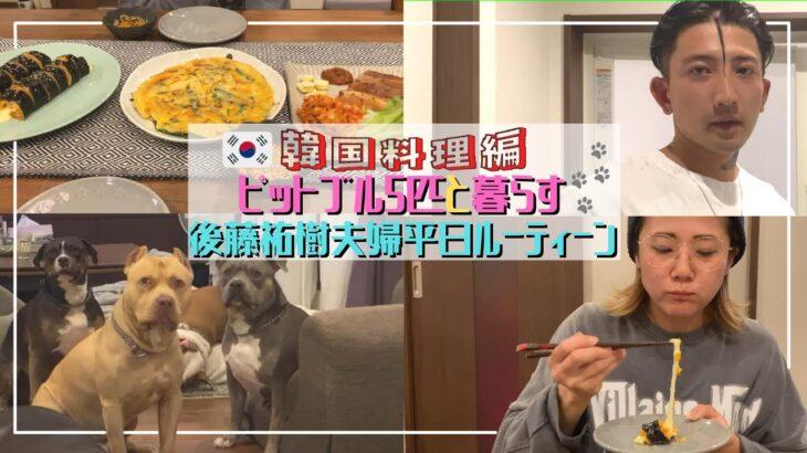 【平日ルーティーン】残業終わりに大人気韓国料理を夫婦で作ってみた【ピットブル多頭飼い】